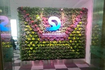 绿植墙玄关屏风植物墙(东部国际商务中心赣州博时门口)