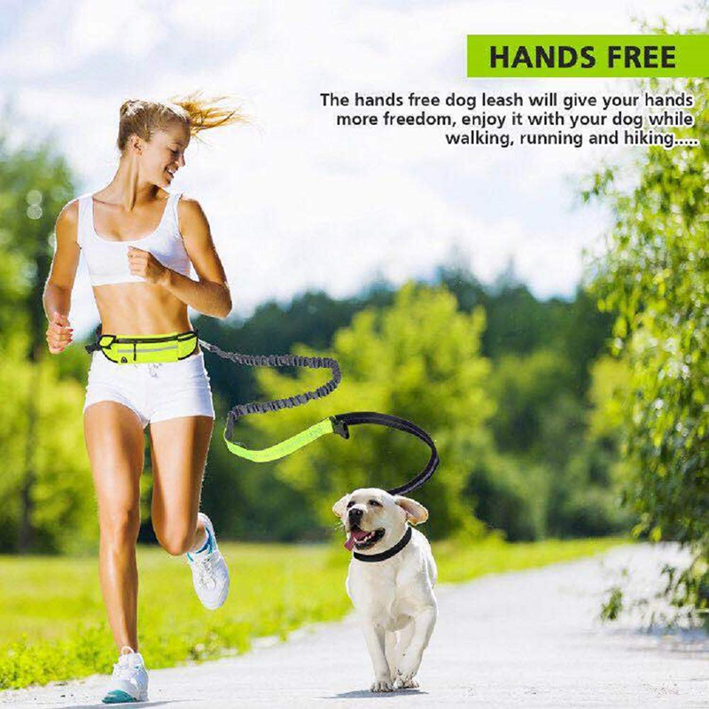 Dual-Handle Reflective Bungee Adjustable Waist Belt Poop Bag Dispenser Pouch Ideal for Medium to Large Dogs Shock Absorbing Hands Free Running Dog Leash for Running Walking Training Hiking