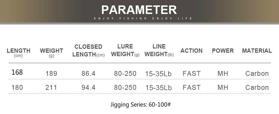 Canne de pêche en mer à soutenir / Jigging puissance 80-250g