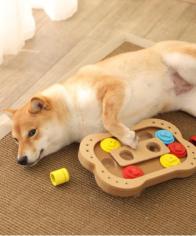 Jouet de stratégie et d'éducation pour chien