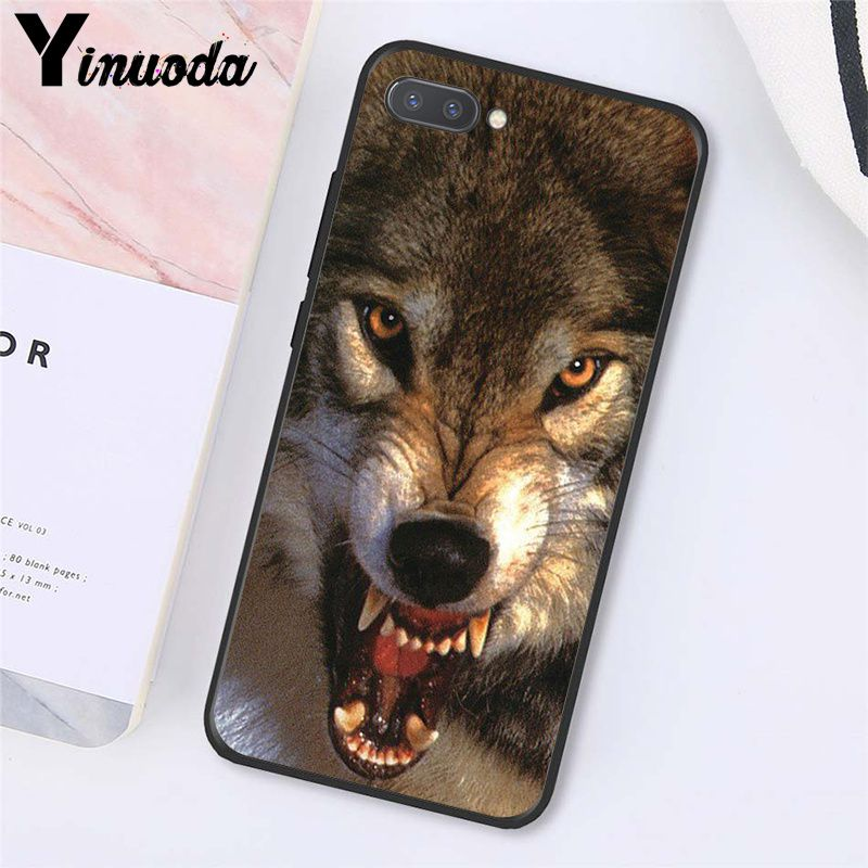 angry Animal wolf Face