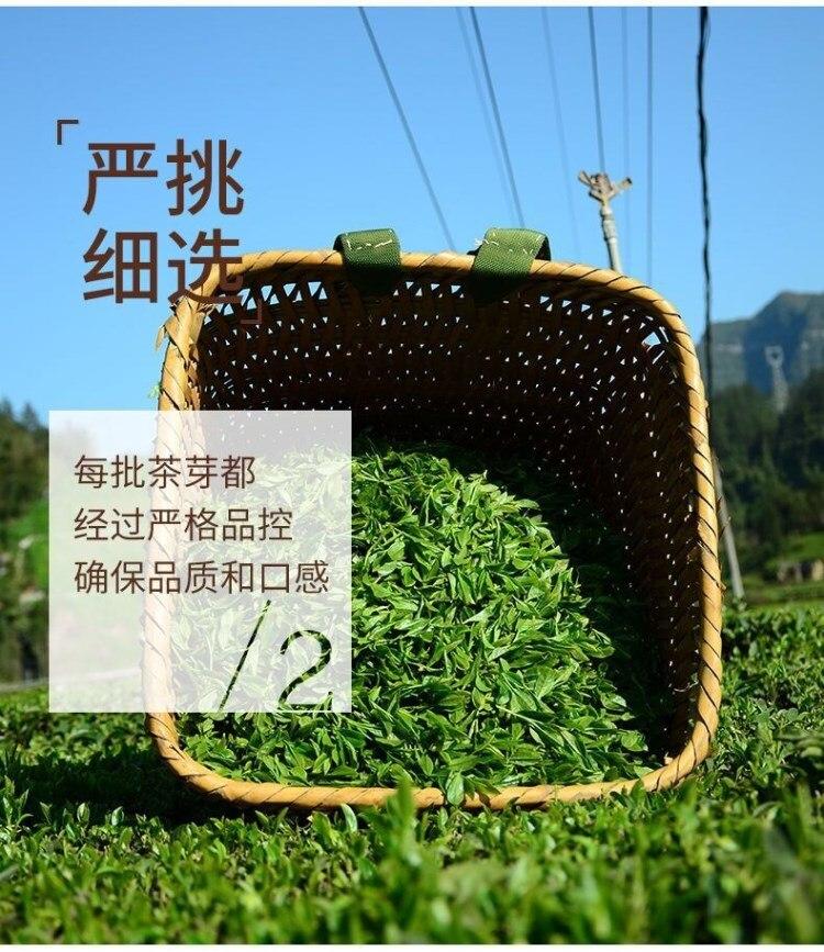 Thé vert de chine cueillette | OkO-OkO