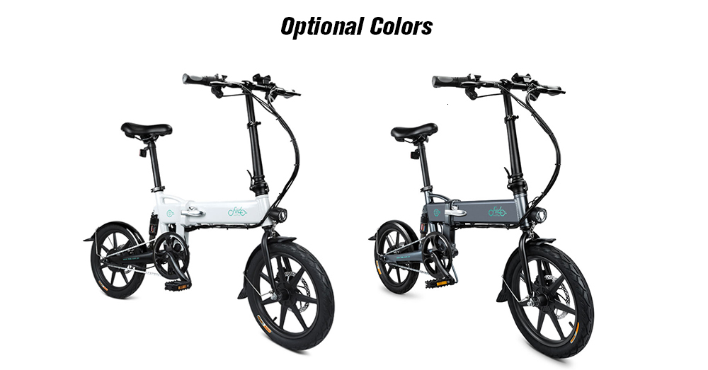16 Inch Fiido D2 Adult Electric Bicycle 2 Wheels Electric Bicycle Mini 250W Folding Portable Electric Bike (5)