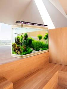 Светодиодная лампа для аквариума LICAH, LDP-1000, бесплатная доставка