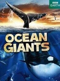 BBC:海洋巨獸