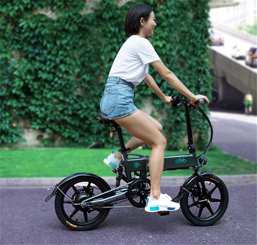 16 Inch Fiido D2 Adult Electric Bicycle 2 Wheels Electric Bicycle Mini 250W Folding Portable Electric Bike (10)