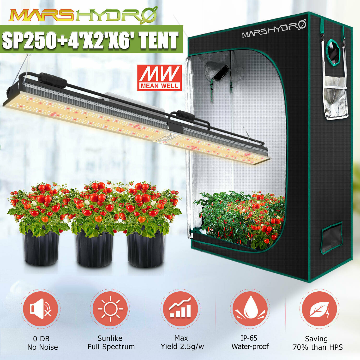 Mars Hydro SP 250 Led Grow Light +120x60x180cm Indoor-Tent Grow Box Full Spectrum Veg Flower