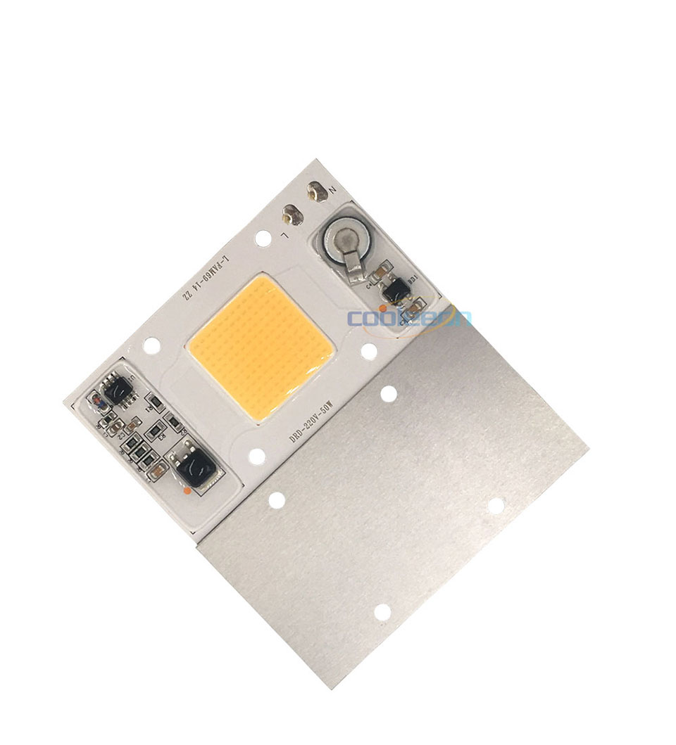 Full Spectrum COB LED Lamp 50W 95% RA 220V AC COB Chip Smart IC for Plant Frow Lights Floodlight Lighting Source Warm Cold White (2)
