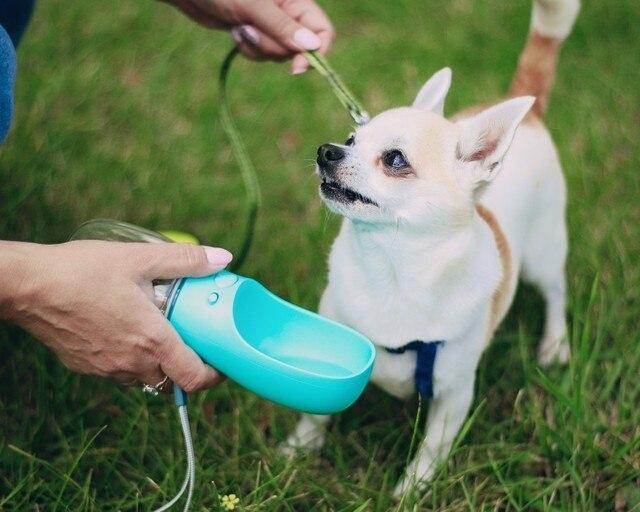 Удобная поилка для собак TAILUP - Бутылка