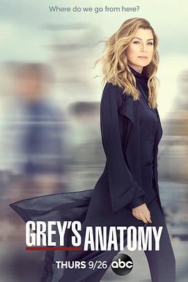 实习医生格蕾第十六季