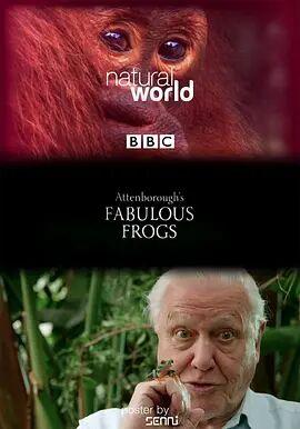 大自然:爱登保罗爷爷带你看绝妙的蛙-纪录片