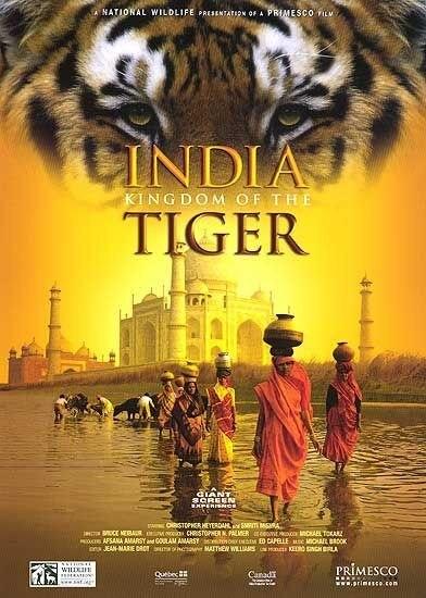 印度老虎王国