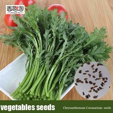 Chrysanthemum Coronarium Seeds, Chinese Vegetable Seeds, Garden Bonsai DIY Plant 200pcs/bag