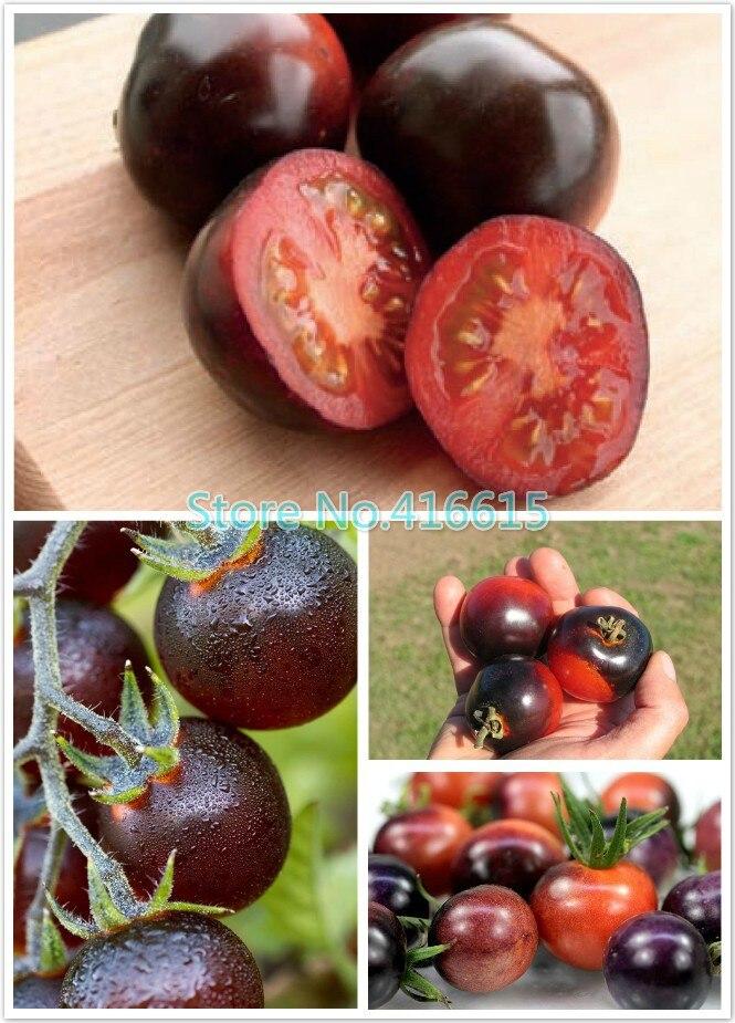 Коричневый помидор сорт
