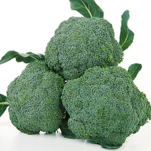 100pcs Broccoli seeds,Cauliflower,Green flowers ,Balcony vegetables bonsai plant seeds(China)