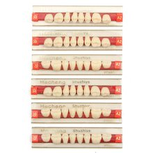 84pcs/set Acrylic Resin Denture Dental Teeth Upper Lower Shade G419 25 30 A2 Oral Care Whitening Tooth Model Dental Materials