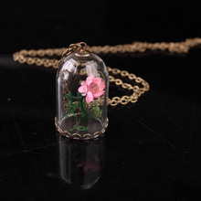 Hand Dandelion Dry Flower Plant Glass Hood Necklace Dandelion Ocean Elements Seaweed And Small Star Flower(China)