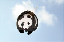 cheap Software Kite 3D Panda windsock ripstop rainbow spinner soft single line kite kids animals fun factory manufacturers toys(China)