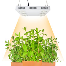 Dimmable CREE CXB3590 600W 72000LM COB LED Grow Light Full Spectrum Replace HPS 1000W Growing Lamp Indoor Plant Growth Lighting