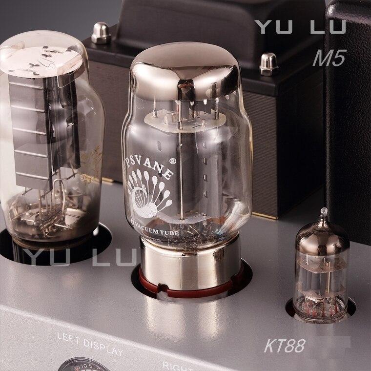 Boyuu_Yulu M5_tube_amp_3-1