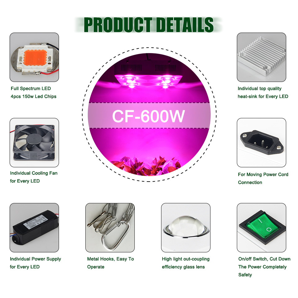 CF-600Wlogo_04