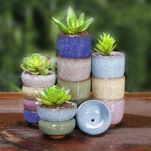 1 piece (6x6x3cm please look at the size, very cute little more meat pots ) Binglie ceramic pots colorful mini fleshy pots