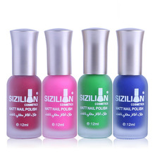 2017 Professional Cute Bottle 12ml Nail Art Makeup Cosmetics 40 Colors Pigments Stamping  Matte nail polishes