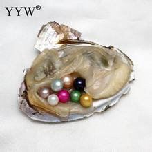 10pcs vacuum-packed akoya oysters 7-8mm round pearls custom white pink purple AAA Shell pearl oyster for Christmas gift 2017