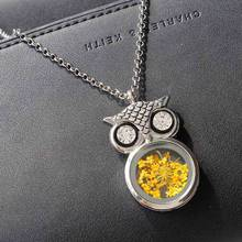 Bling-world Women Owl Pendant Sweater Chain Long Necklace Jewelry Necklace(China)