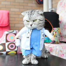 Lovely Cat Hollowen Pet Doctor Design Suit Masquerade Hallowmas Xmas Puppy Dog Apparel(China)