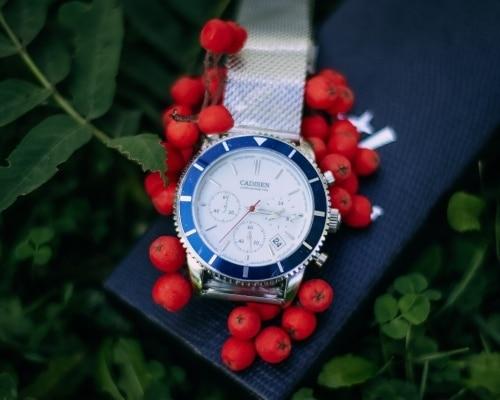 Кварцевые часы CADISEN C9067 - цена