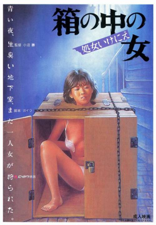 箱中女的海报
