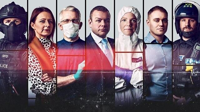 谋杀调查实录第一季