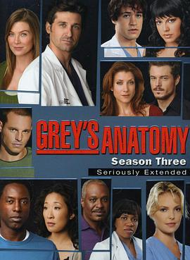 实习医生格蕾第三季
