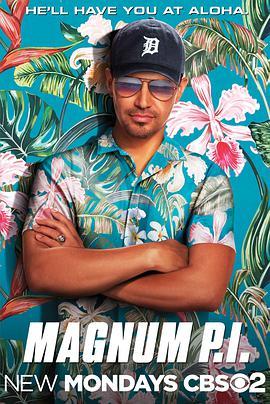 新夏威夷神探
