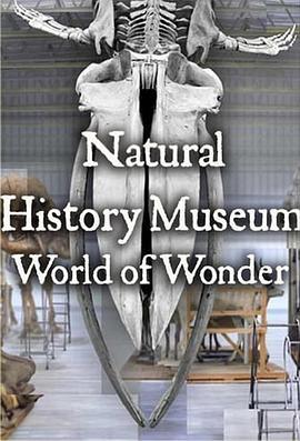 英国自然历史博物馆:神奇世界第一季