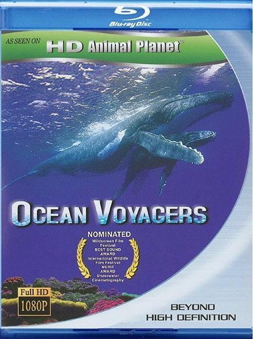 动物星球系列.鲸奇之旅