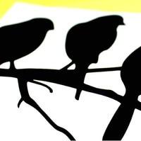 птицы черный простой диван стены 2007