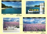 красочные цветок обои фреску художника / фотообоями / декоративные фотообоями для гостиной и ресторан