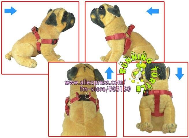 I Puppy One Harness - Goldenacresdogs.com