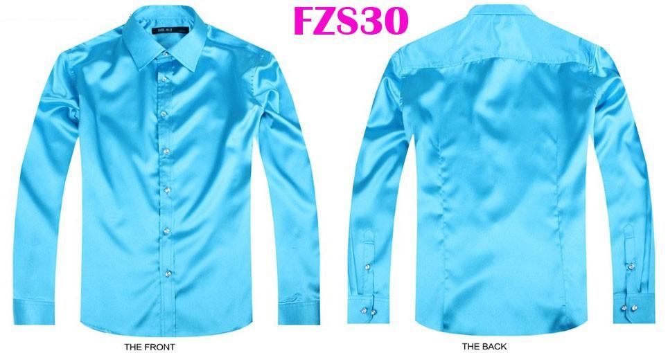 FZS30