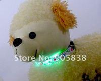 бесплатная доставка! новый продукт! в красочные flollipops серии из светодиодов ошейник TZ по-pet3600 мигающий ошейник. минимальный заказ 5 шт