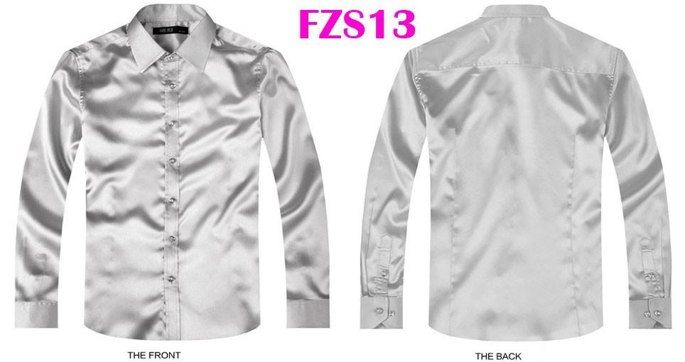 FZS13