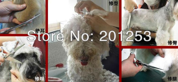grooming tesouras pet hair clipper lzs0038