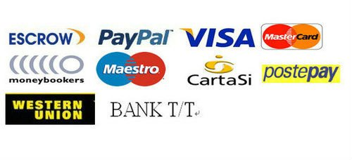 Payment 2011