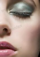 горячая распродажа! новый стиль макияжа красоты комплект комплект тени для век лица румяна пудра бесплатная доставка 1 комплект /много