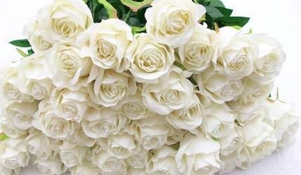 Artifical rose flower 4 colorsredpurple whitegreen pink rose artifical rose flower 4 colorsredpurple whitegreen pink rose decoration flowers mightylinksfo