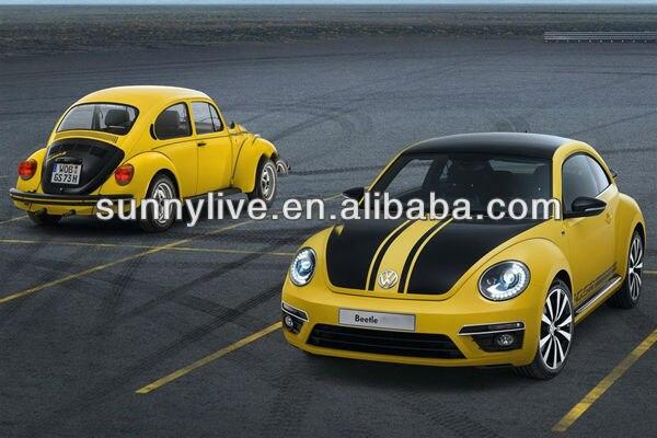 beetle- (5).jpg