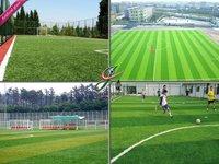 чемпионат искусственный трава футбол