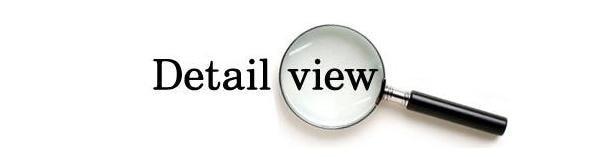 Detail View.JPG